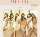 Apink Pink LUV