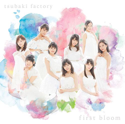 Tsubaki Factory – Happy Cracker (ハッピークラッカー)
