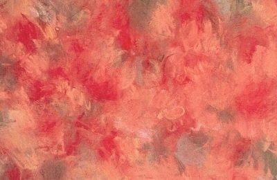 Crucial Star (크루셜 스타) – Cherry Blossom